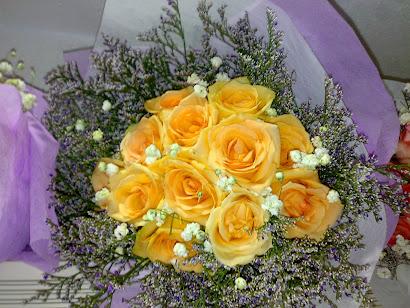 12 Peach Roses