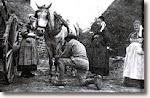Je me souviens du travail dans les fermes...