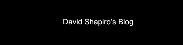 David Shapiro's blog