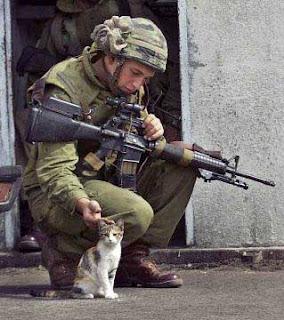 Soldier pets kitten