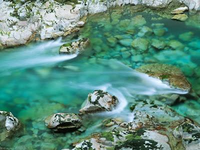 closeup photography, beauty photography, nature photography, waterfall, unique photography,