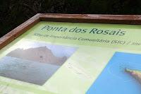Café Portugal - PASSEIO DE JORNALISTAS nos Açores - São Jorge - Ponta dos Rosais