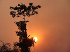 Evenings at Malwabar