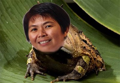 Hee Yit Foong traitor frog