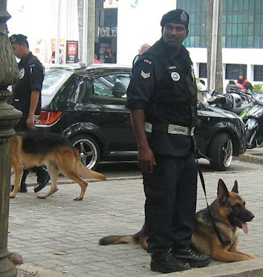Police with Alsatian dogs
