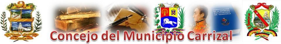Concejo del Municipio Carrizal