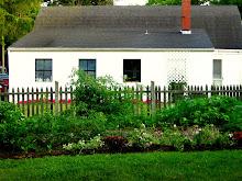 Our Suburban Farm
