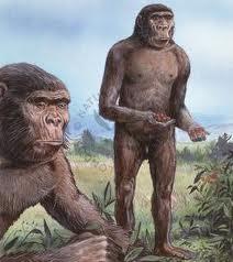 penjelasan dan gambar manusia purba