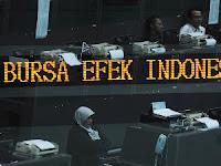 Pasar Bursa Efek Indonesia (BEI)