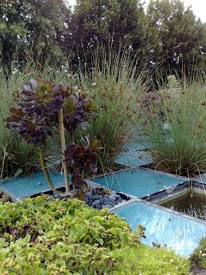garden, glass squares