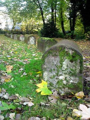 autumn, park, stones