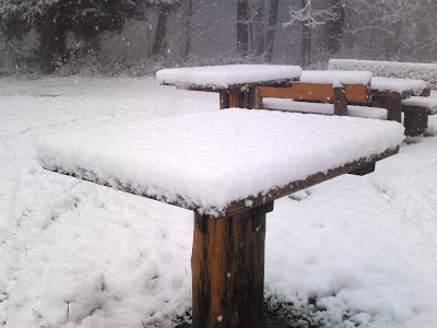 snow,  table