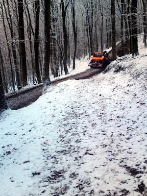 truck, woods, snow