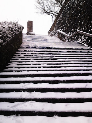 steps, snow