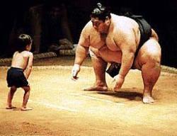 gulat sumo dari jepang
