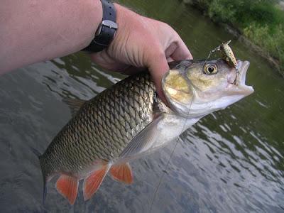 spinner zum angeln selber bauen anleitung