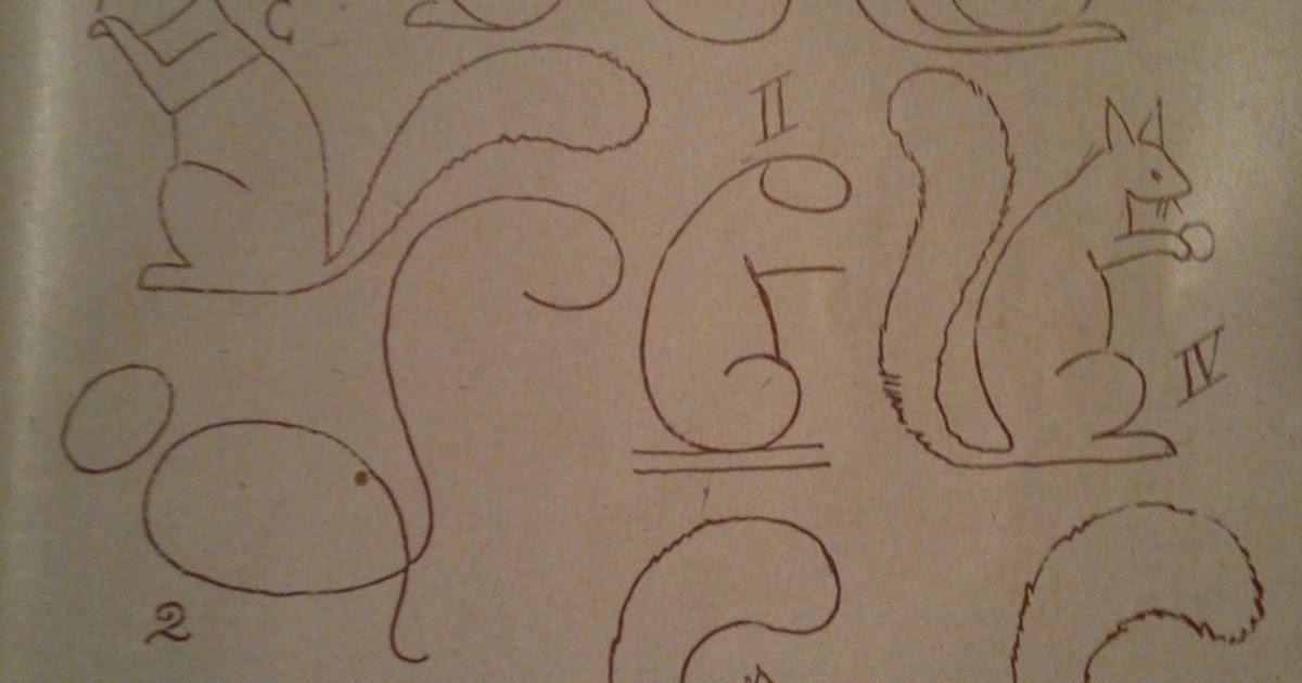 Dessins astuces pour debutants dessiner un ecureuil - Ecureuil a dessiner ...