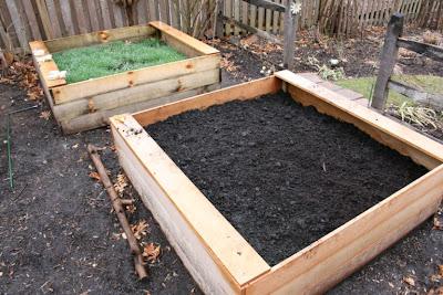 Heirloom Gardener Raised Vegetable Beds Organically Preparing The Soil For Planting