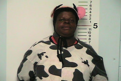 Lady In Cow Costume Arrested  sc 1 st  jawnny & JAWNNY: Lady In Cow Costume Arrested