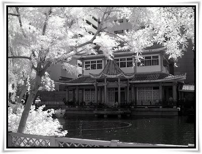 荃灣賽馬會德華公園(Tsuen Wan Jockey Club Tak Wah Park)@IR