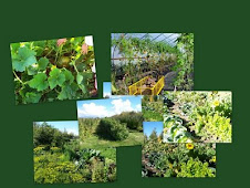 US Community Garden Database
