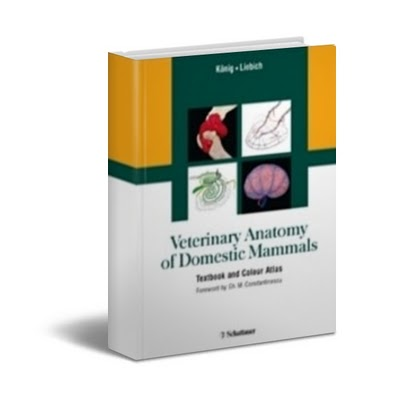 free book downloads: Veterinary Anatomy of Domestic Mammals ...