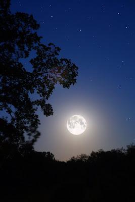 New Paltz: Moonlight Historic Harcourt Preserve Walk