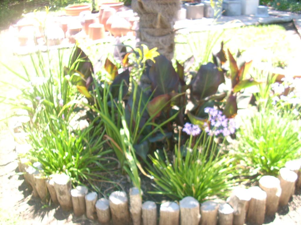 Die o de parques y jardines bajo mantenimiento for Mantenimiento de parques y jardines