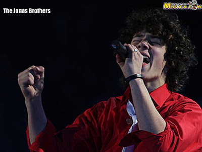 Happy Birthday, Nick Jonas! Celebrate With His Hottest