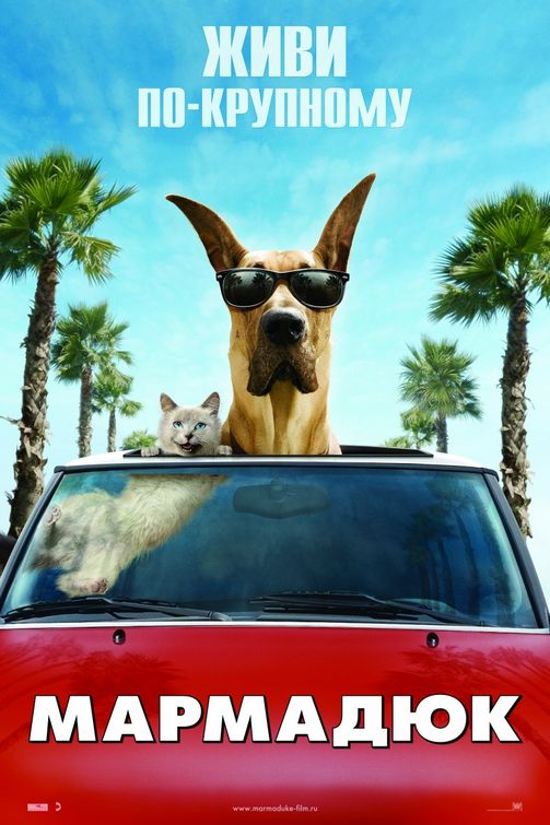 Marmaduke Movie Review & Film Summary (2010) | Roger Ebert