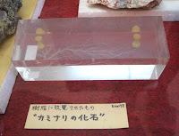 繊細なカミナリ石