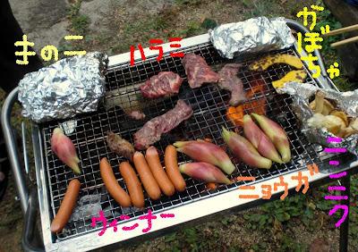ホイル焼き、ハラミ、ウィンナー、かぼちゃ、茗荷