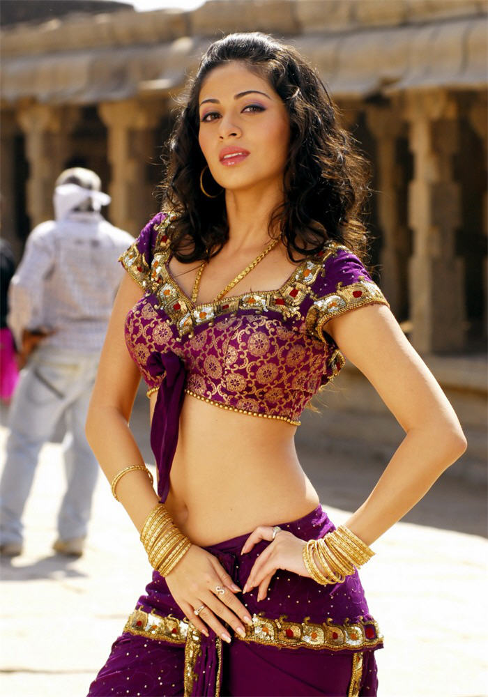 Sada in South Indian Style in a Blouse showing her Navel