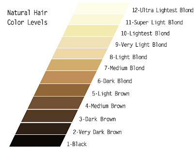 Understandin g the LEVEL SYSTEM of HAIR COLOR