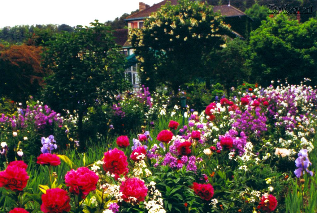 De cima do salto os jardins de monet for O jardins d eglantine