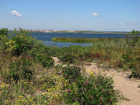 Jamaica Bay Wildlife Refuge photo 2