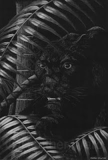 black leopard hunting at night drawing with white charcoal