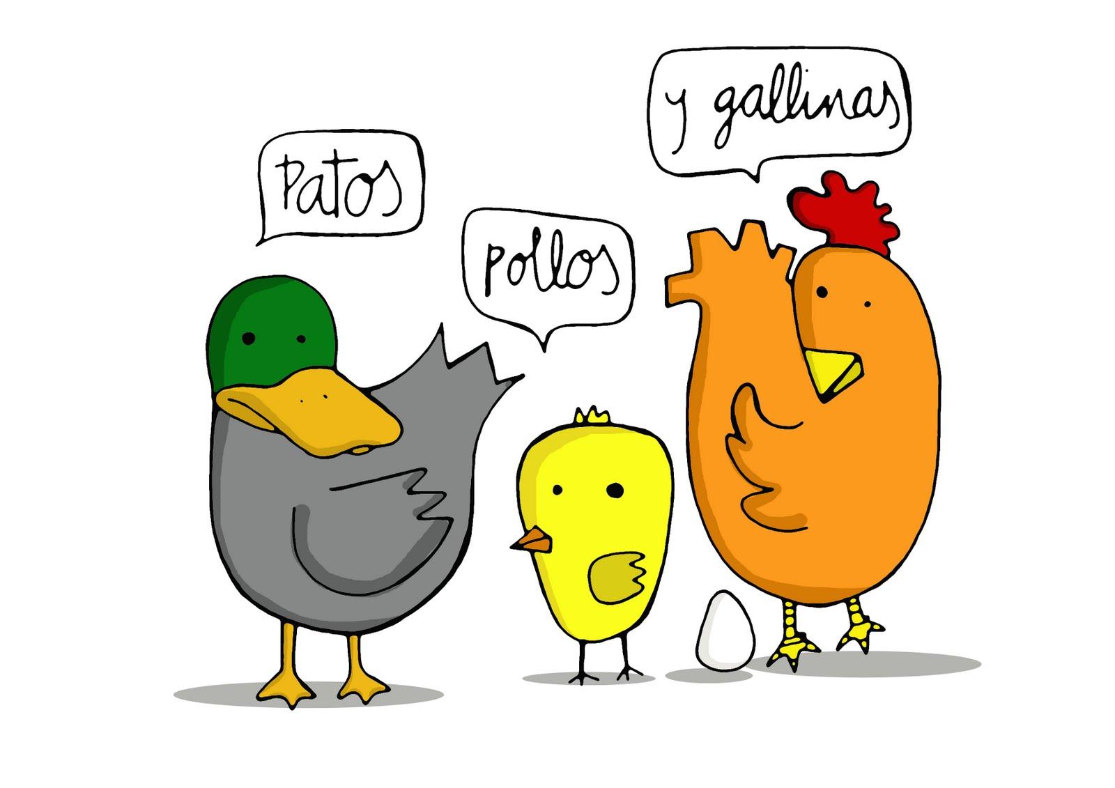 Marta Jiménez: Patos, pollos y gallinas van...