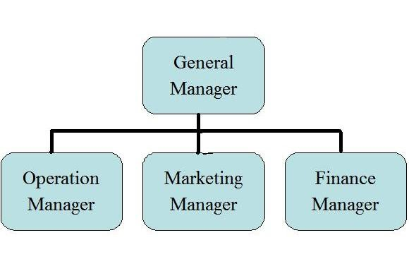 organizational chart small business