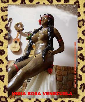 INDIA ROSA VENEZUELA IMAGEN 3