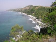 Costa de Flores