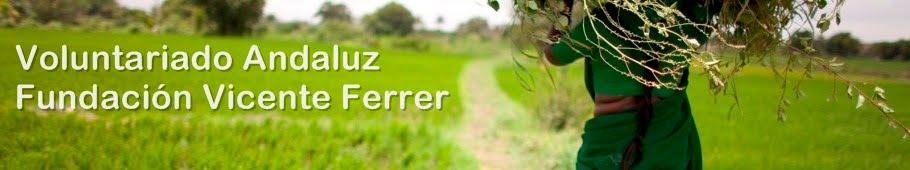 Voluntariado de Andalucía de la Fundación Vicente Ferrer
