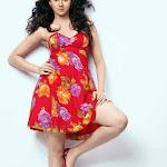 Kamna Jathmalani Sexy Photo Gallery Hq Wallpapers