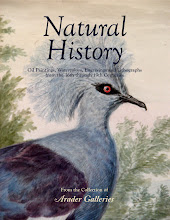 Natural History: Oil Paintings, Watercolors, Engravings and Lithographs from the 16th through 19th