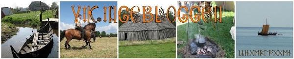 Vikingebloggen