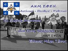 A.K.M E.Φ.Ε.Ν Λαρνακας