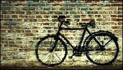 350 bicicletas rosarinas