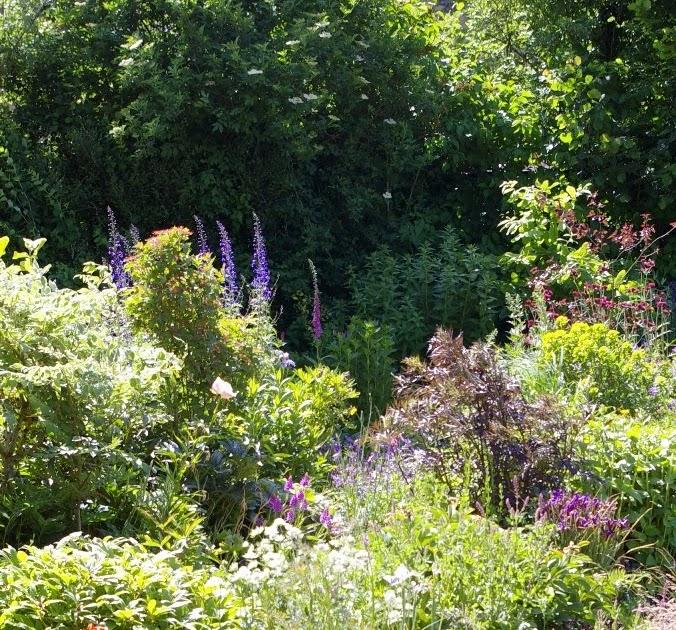 John Grimshaws Garden Diary: Worcester College gardens