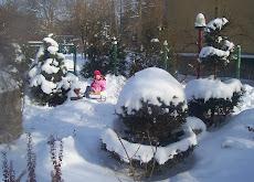 zima z JUlką w tle
