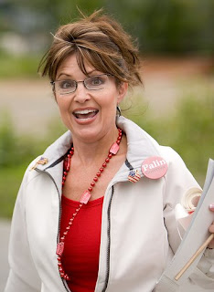 Don't vote for Sarah Palin